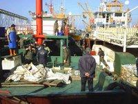Balıkçılara yeni sezon öncesi 'küçük boy' uyarısı yapıldı