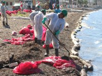 Deniz kirliliğine sebep olan firmaya 144 bin lira para cezası kesildi