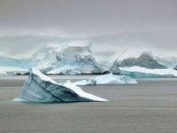 Burcu Özsoy: Antarktika'daki buz kopmasının iklim değişikliyle ilgisi yok
