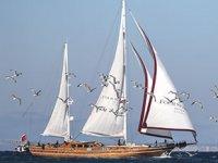 Yelken tutkunları Bodrum'da bir araya gelecek