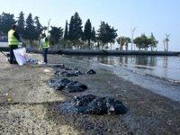 Aliağa'daki petrol sızıntısıyla ilgili balıkçılara uyarı geldi