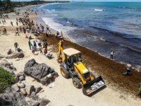 Brezilya plajlarını kirleten petrol, Venezuela'dan gelmiş