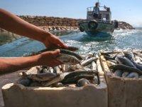 Van Gölü'ndeki kayıtlı balıkçı teknelerine destek verilecek