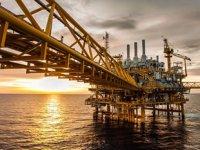 OPEC'in petrol üretimindeki payı düşecek