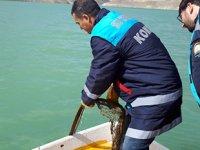 Zernek Barajı'nda stok tespit çalışması yapıldı