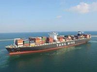 Yang Ming'in Türkiye'den Avrupa'ya direkt servisleri artıyor