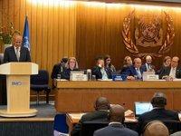 Türkiye, yeniden 'IMO Konsey Üyesi' seçildi