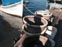 Didim'de su ürünleri ekipleri, denetimlerde 54 bin TL ceza kesti
