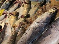 Sıcak havalar tezgahlarda balık fiyatlarını yükseltti
