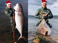 Zıpkınla 1.5 metre uzunluğunda 50 kilogram ağırlığında balık avladı