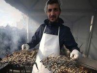 Düzce'de düzenlenen festivalde 2,5 ton hamsi dağıtıldı