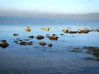Deniz çekildi, antik limanın kalıntıları su yüzeyine çıktı