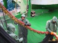 Çanakkale'de balıkçılara avlanma eğitimi verildi