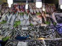 Balık av sezonunda sona geliniyor
