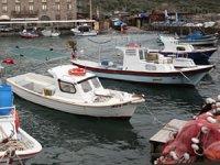 Düzensiz göçmenlerin Avrupa'ya geçişinde balıkçılar göreve hazır