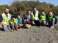 Öğrenciler sahile kum zambağı ekti