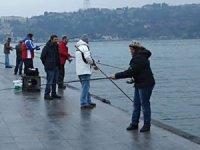 Balık tutkunlarına kötü haber