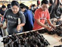 Vuhan'da balık pazarı yeniden açıldı iddia tepki