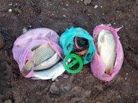 Samsat'ta balık avlayanlara göz açtırılmıyor