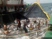 Moritanya'ya giden bin balıkçının durumu gayet iyi