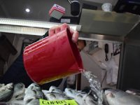 Balık fiyatları uygun fakat satışlar zayıf