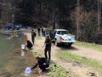 Bolu'da göl ve derelere 600 bin alabalık bırakıldı