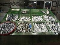 Vatandaşlar çupra ve levrek balığına ilgi gösterdi