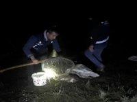Van Gölü'nde kaçak balık avcılığı yapan kişiye para cezası verildi
