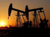 Petrol endüstrisinde 200'den fazla şirket iflas etti