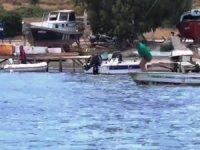 Denizde vahşet! Köpek balığına işkence ettiler