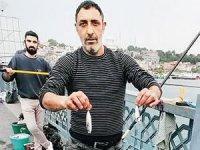 Kısıtlama sonrası oltalar balık doldu