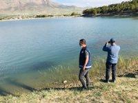 Van'daki balık ölümleri araştırılıyor