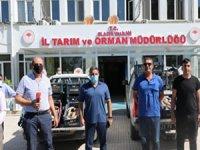 Elazığ'da 1 ton kaçak balık ele geçirildi