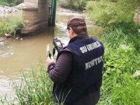 Kars'taki balık ölümlerinin ardından ekipler harekete geçti!