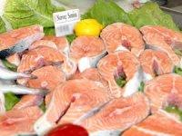 Prof. Dr. Tanrıkul: Somon balığının Kovid-19 taşıyıcısı olduğuna dair bilimsel kanıt yok