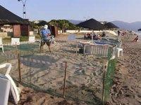 Caretta caretta, Kuşadası sahiline yumurtalarını bıraktı