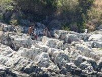 Kuşadası Körfezi'nde lastik botları batan 2 göçmen kurtarıldı