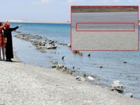 Van Gölü canavarı efsanesi geri döndü