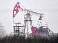 OPEC'in ham petrol üretimi Temmuz'da arttı