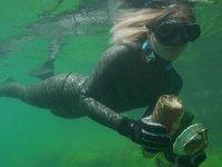 Denizlerdeki kirliliğe ve geri dönüşümün önemine dikkat çekildi