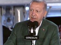 Cumhurbaşkanı Recep Tayyip Erdoğan, Giresun Limanı'nda balıkçılık sezonunu açtı
