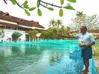 Hindistan, lüks otel havuzlarını balık çiftliğine çevirdi