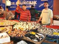 Aliağa'da balık bolluğu balıkçıları memnun etti