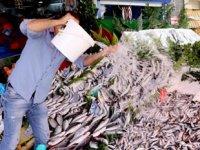 Balık sezonu açıldı, fiyatlar düştü