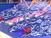 Bilecik'te balıkçılar denetlendi