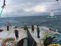 Samsun'da yasadışı balık av cezaları 50 bin TL'ye yükseltildi