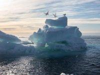 Kuzey Kutbu buzullarında en düşük 2. seviye ölçüldü