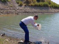 Hatay'da göl ve göletlere 94 bin sazan yavrusu bırakıldı