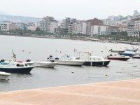 İshak Memişoğlu: Kurupelit Yat Limanı'nın doldurulması 'Doğa Cinayeti'dir