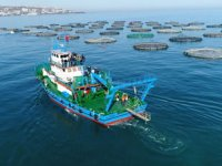 Trabzonlu kültür balığı yetiştiricileri destek bekliyor